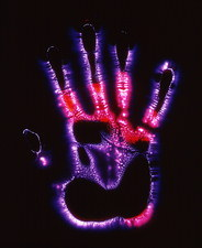 Kirlian photograph of a human hand