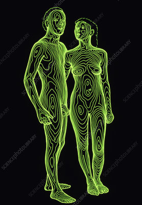 Contour map of a man & woman standing side by side