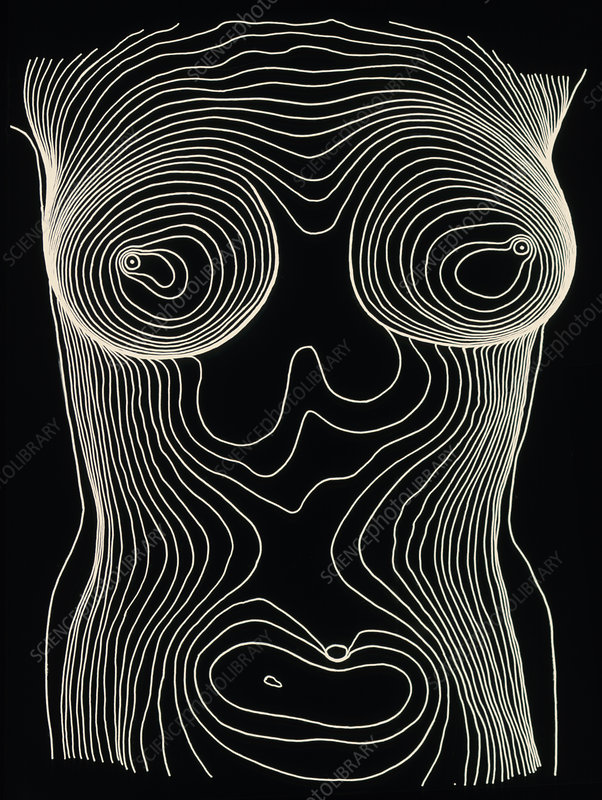 Contour map of female chest & abdomen
