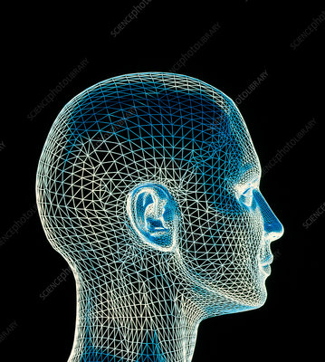 Woman's head, computer artwork