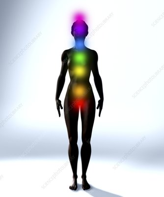 Chakra energy points, computer artwork