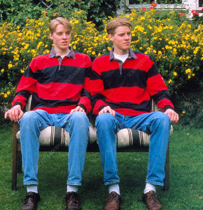 Twins dizygotic sitting on bench