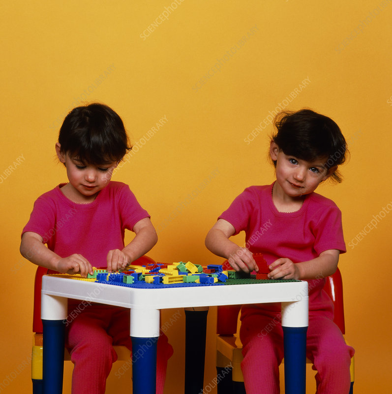 Identical twin girls aged 3 years playing
