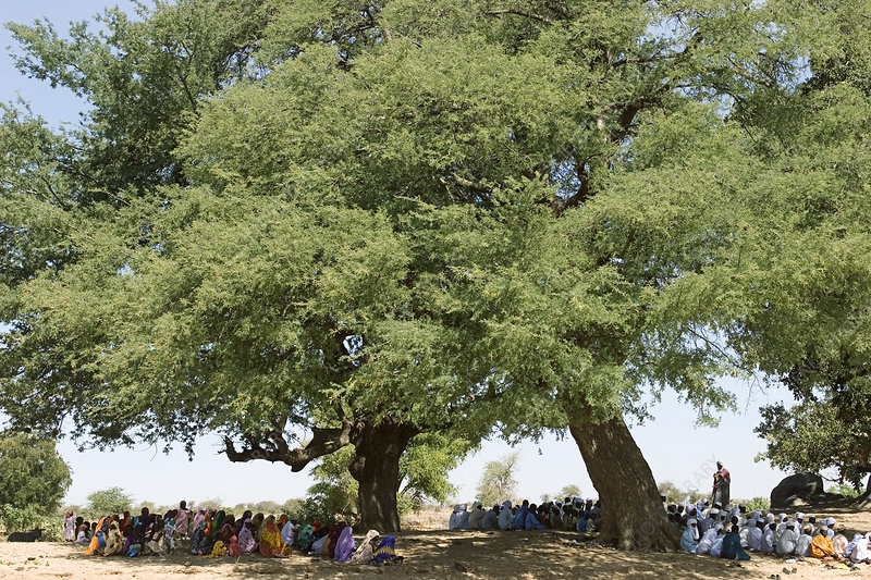 Villagers gathering for prayers