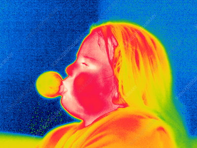 Girl with bubblegum, thermogram