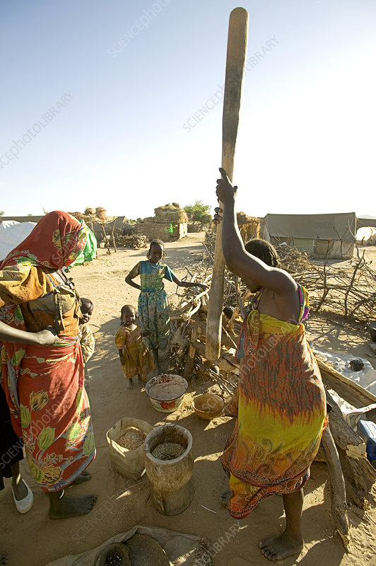 Women pounding grain