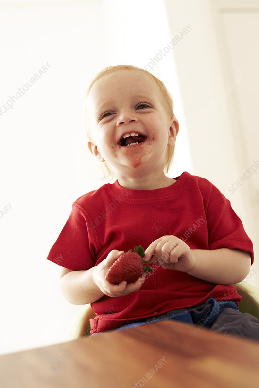 Boy eating a strawberry