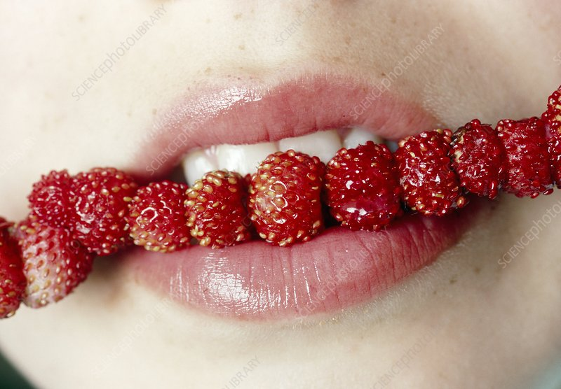 Woman eating wild strawberries
