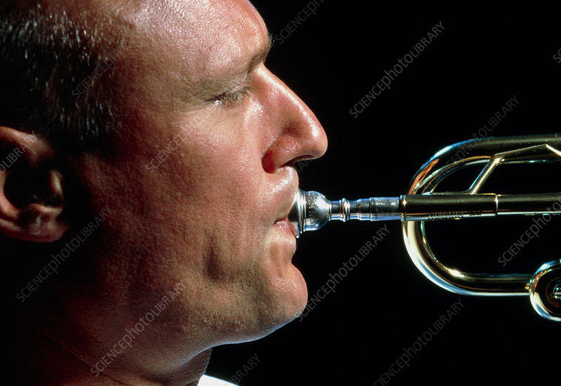 Profile of man playing a trumpet