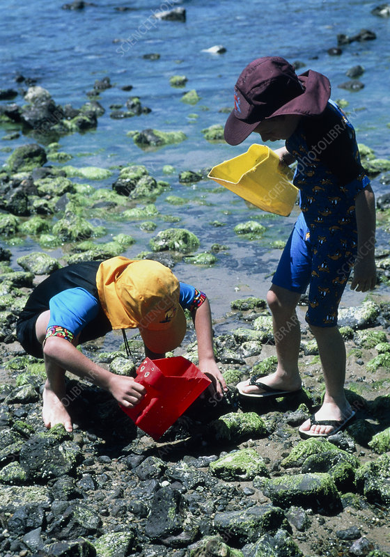Children at the beach dressed to prevent sunburn