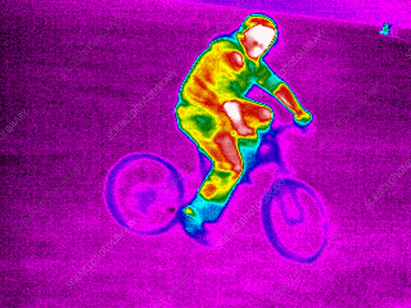 Cycling, thermogram