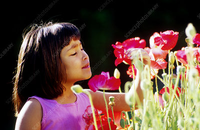 Asian girl admiring her flower garden