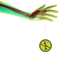 Playing with a yo-yo, coloured X-ray