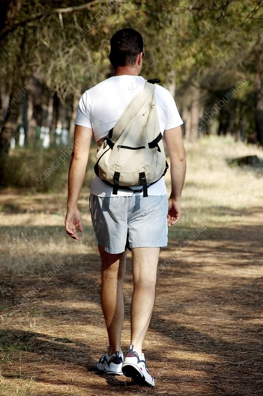 Man walking through woodland