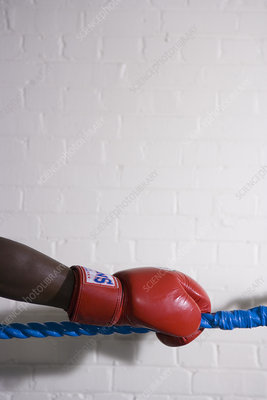 Boxer holding the ropes