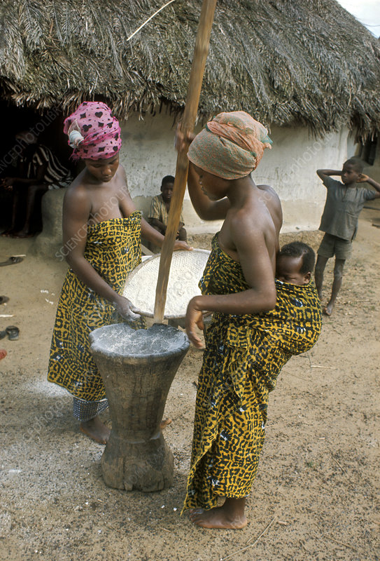Women of the Kpelle Tribe of West Africa