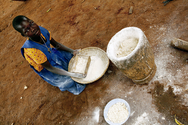 Making maize flour, Uganda