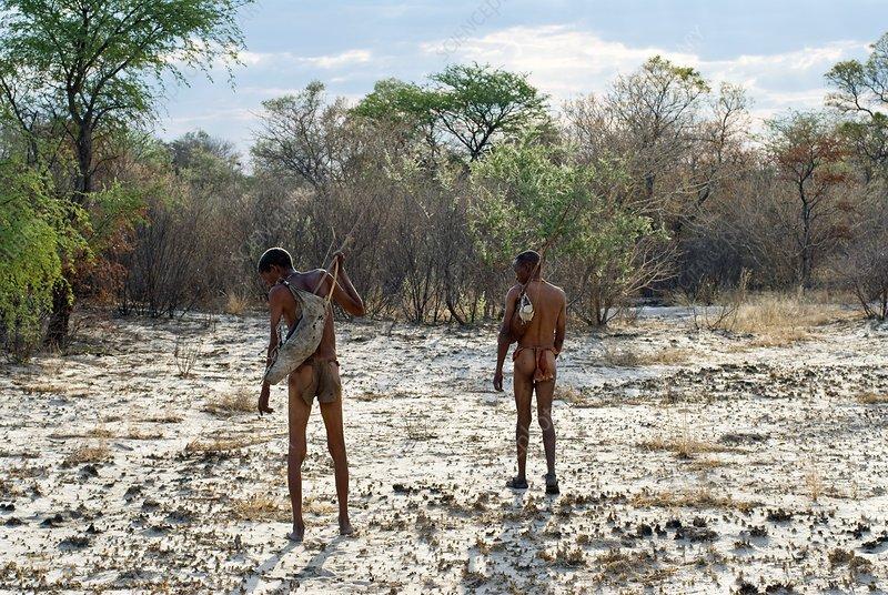 Bushmen, Namibia