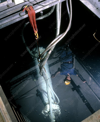 Worker looks at a WIMP detector in a pool of water