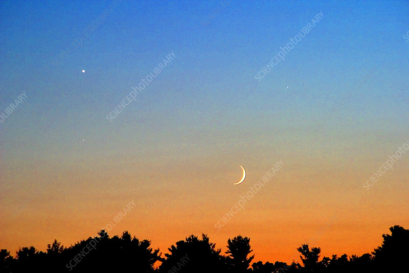 'Venus, Jupiter, Earth's Moon, and Spica'