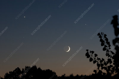 'Crescent Moon, Venus, Jupiter, and Spica'