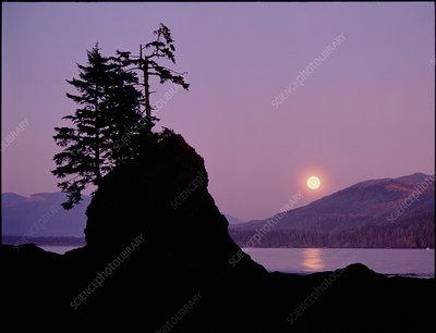 Moonrise over Owen Point, British Columbia, Canada