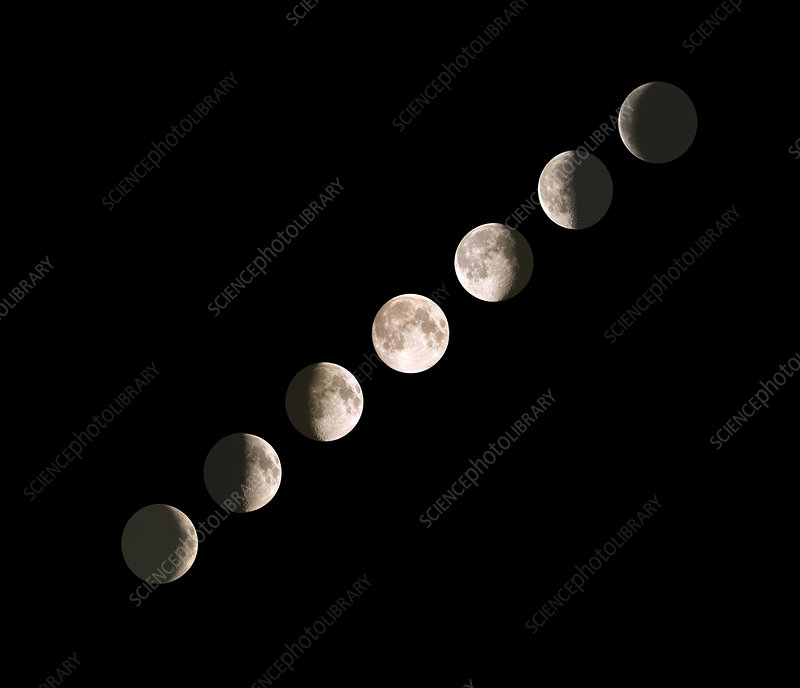 Composite image of the phases of the Moon