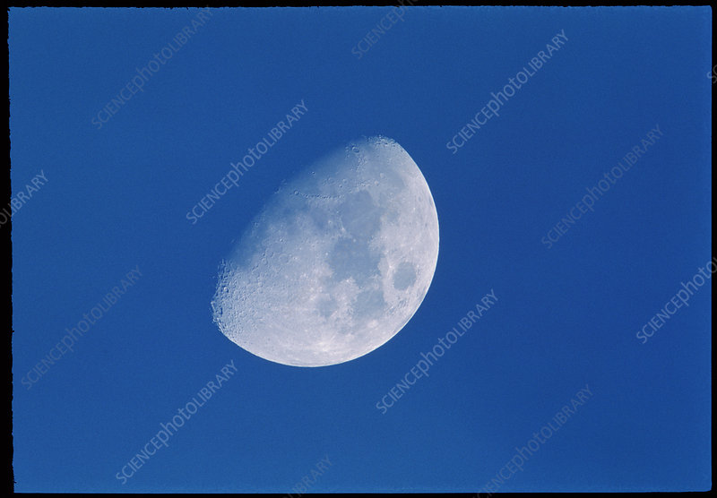 View of a gibbous moon
