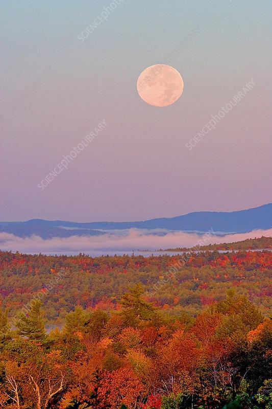 Autumn Moonset