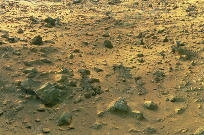 View of rock strewn surface of mars