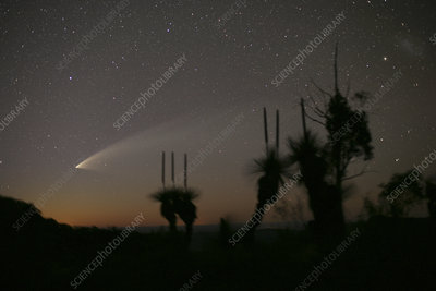 Comet McNaught, 30th January 2007