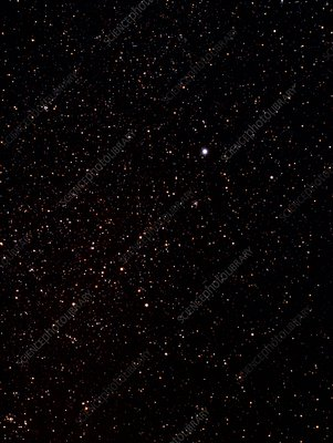 Optical photo of the constellation of Canis Major