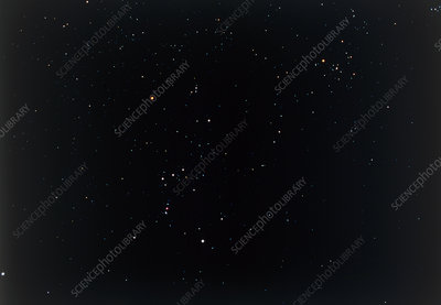 Constellation of Orion, the hunter