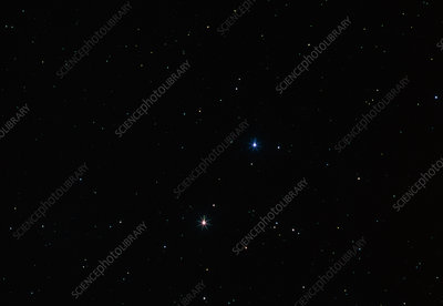 Castor and Pollux in the constellation of Gemini