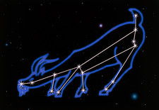Artwork of the zodiacal constellation Capricornus