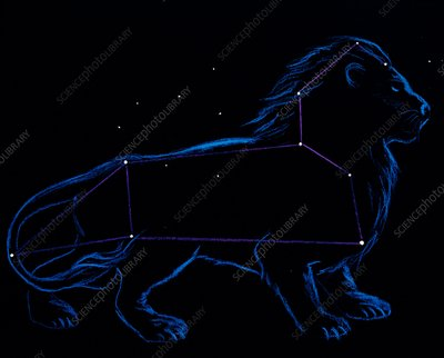 Artwork of the zodiacal constellation Leo