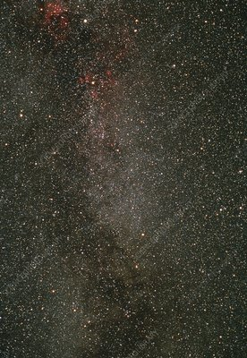 Optical image of the constellation Cygnus