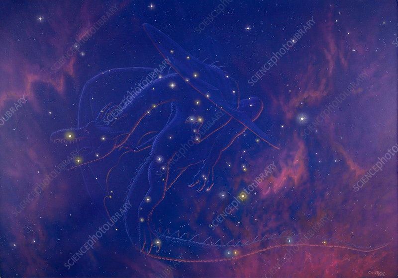 Draco constellation - Stock Image - R550/0432 - Science