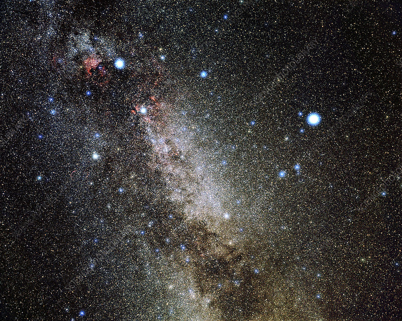 Cygnus and Lyra constellations