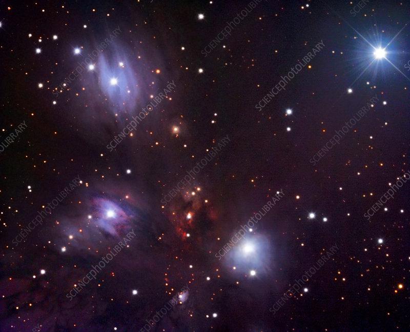 Reflection nebula (NGC 2170)
