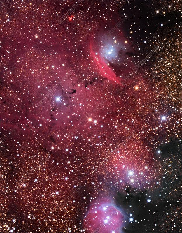 Emission nebula (NGC 6559)