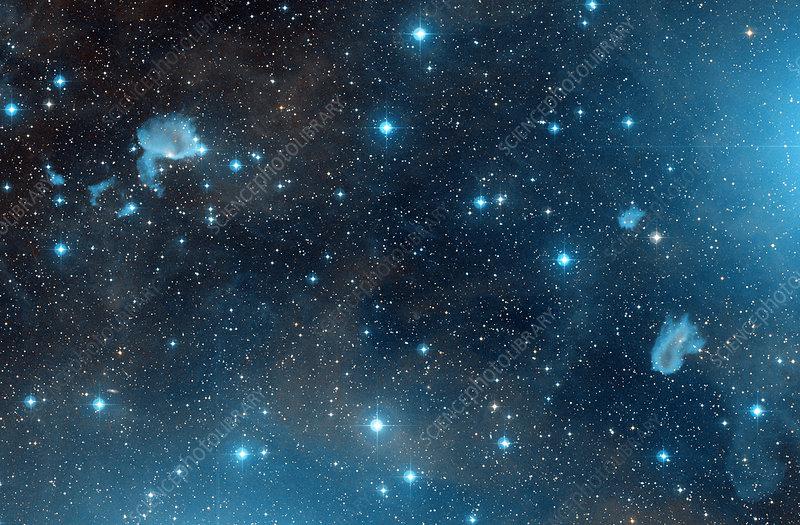 IC 423 and IC 426 reflection nebulae