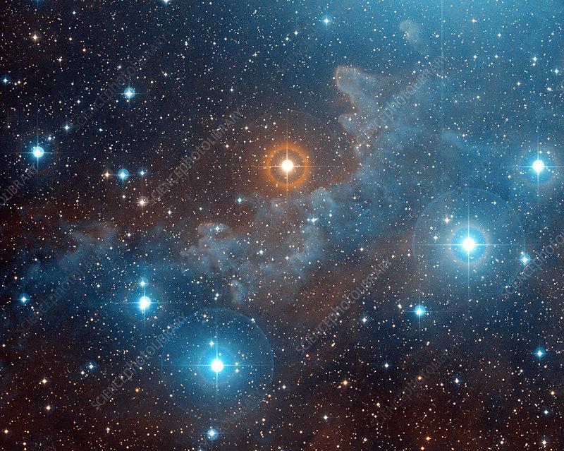 Alnilam nebula, NGC 1990