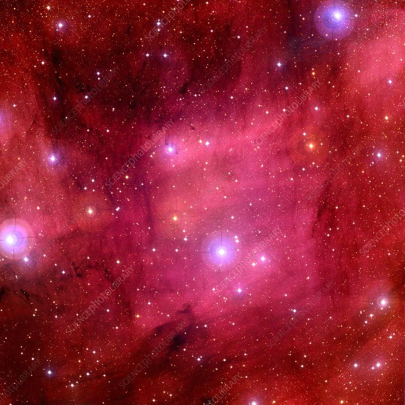 Emission nebula IC 5068, optical image