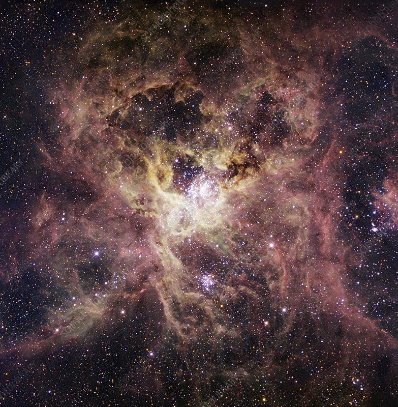 Tarantula nebula, optical image