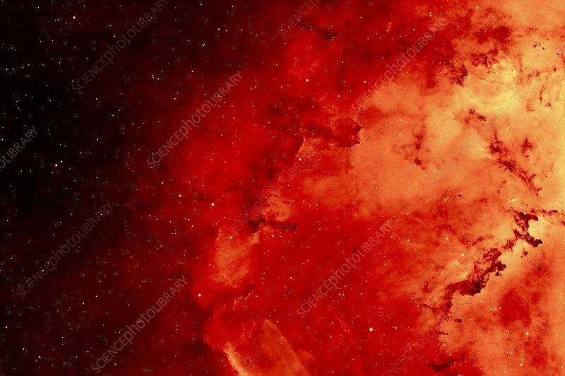 Rosette nebula, infrared image