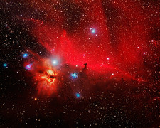 Horsehead and Flame nebulae