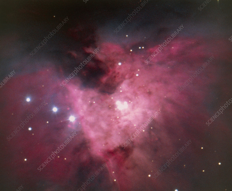 The Trapezium and part of the Orion Nebula