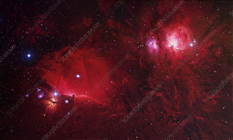 Nebulae in Orion