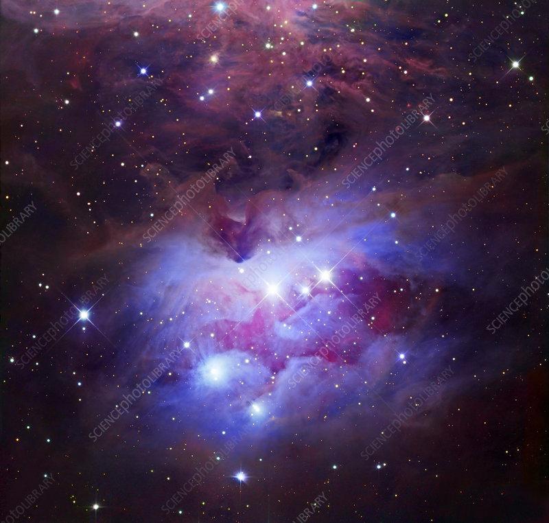 Reflection nebula (NGC 1977)
